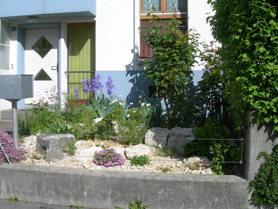 kleiner Garten vor einem Familienhaus mit verschiedenen Pflanzen.