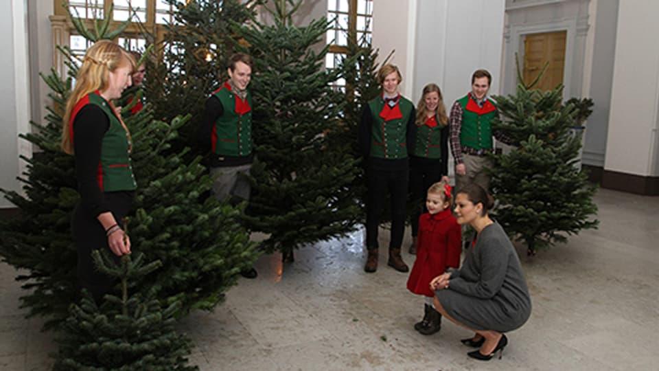 Prinzessin Estelle bewundert einen Weihnachtsbaum.