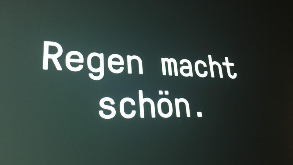 """ina fotografia cun scret si """"Regen macht schön"""""""
