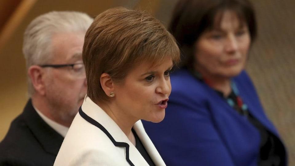 Brexit oder nicht? - In Schottland soll es ein zweites Unabhängigkeitsreferendum geben