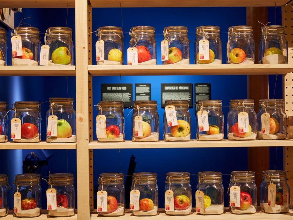verschiedene Äpfel in Gläsern.