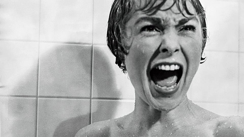 Was macht den Schrei zum Angstschrei?