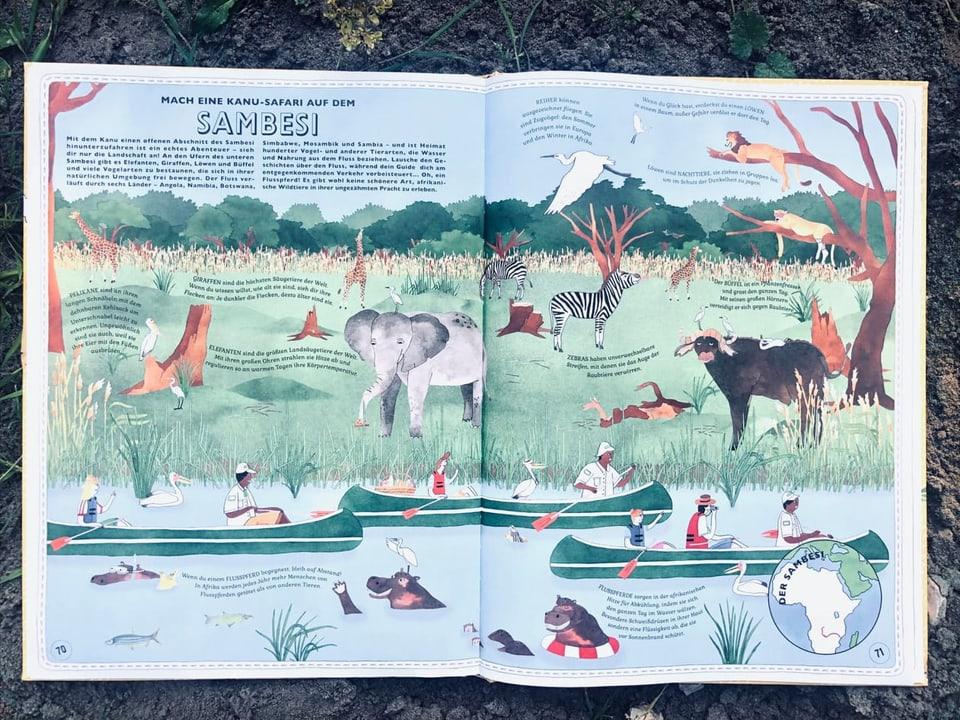 Green Jacaranda Safaris