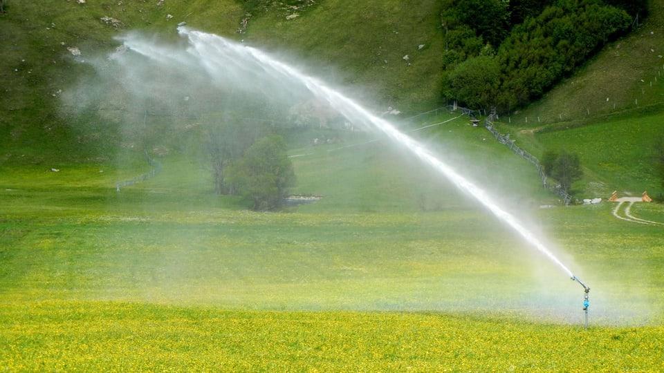 Wasser contra Natur: Die Bewässerung der Wiesen im Tal steigert zwar die landwirtschaftlichen Erträge, beeinträchtigt aber dramatisch die Artenvielfalt in den Trockenwiesen und entzieht dem Fluss im Tal während trockenen Perioden wichtiges Wasser (Sprinklerbewässerung von Grasland).