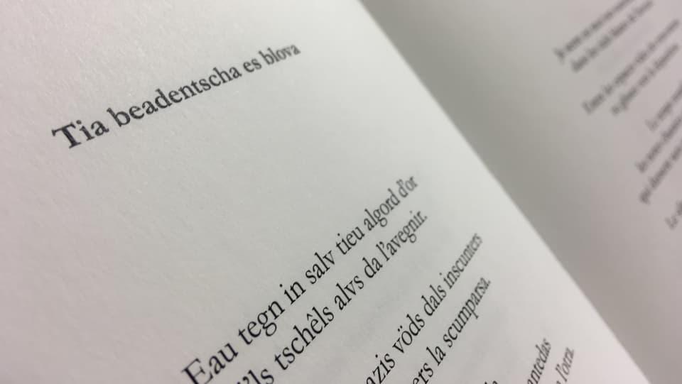 Ina fotografia da la poesia.