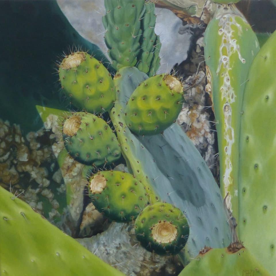 Bild grüner Kaktus