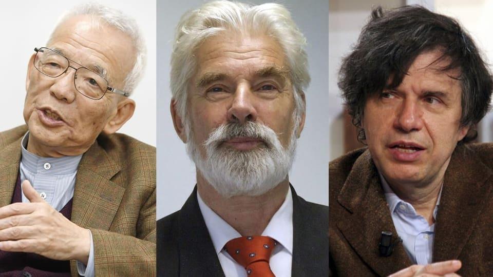 Der Physik-Nobelpreis geht an drei Klimaforscher