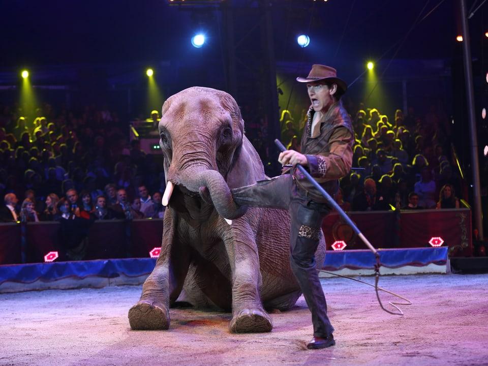 Dompteur und Elefant.