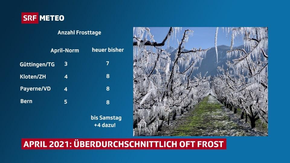 Viele Frosttage