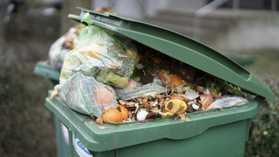 Foodwaste mit innovativen Projekten vermindern