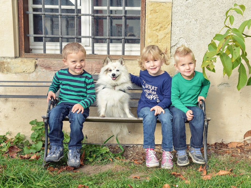 drei Kinder mit Hund