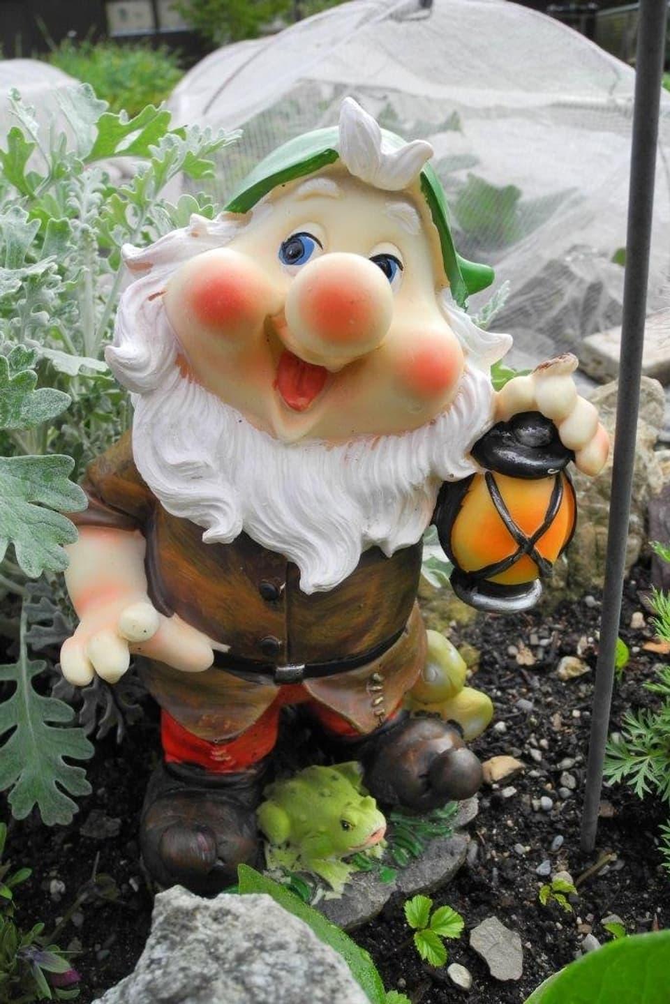 Nahaufnahme eines Gartenzwerges mit roter Nase, roten Bäckchen, weit geöffnetem Mund, himmelblauen Augen, wallendem, weissem Bart, grüner Zipfelmütze, Lederwams, roten Hosen sowie einer Laterne in der Hand. Zu seinen Füssen sitzt ein grüner Frosch.
