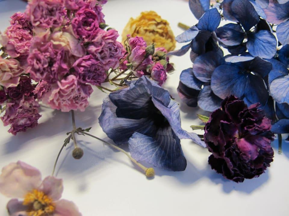 Getrockneten Blumen.