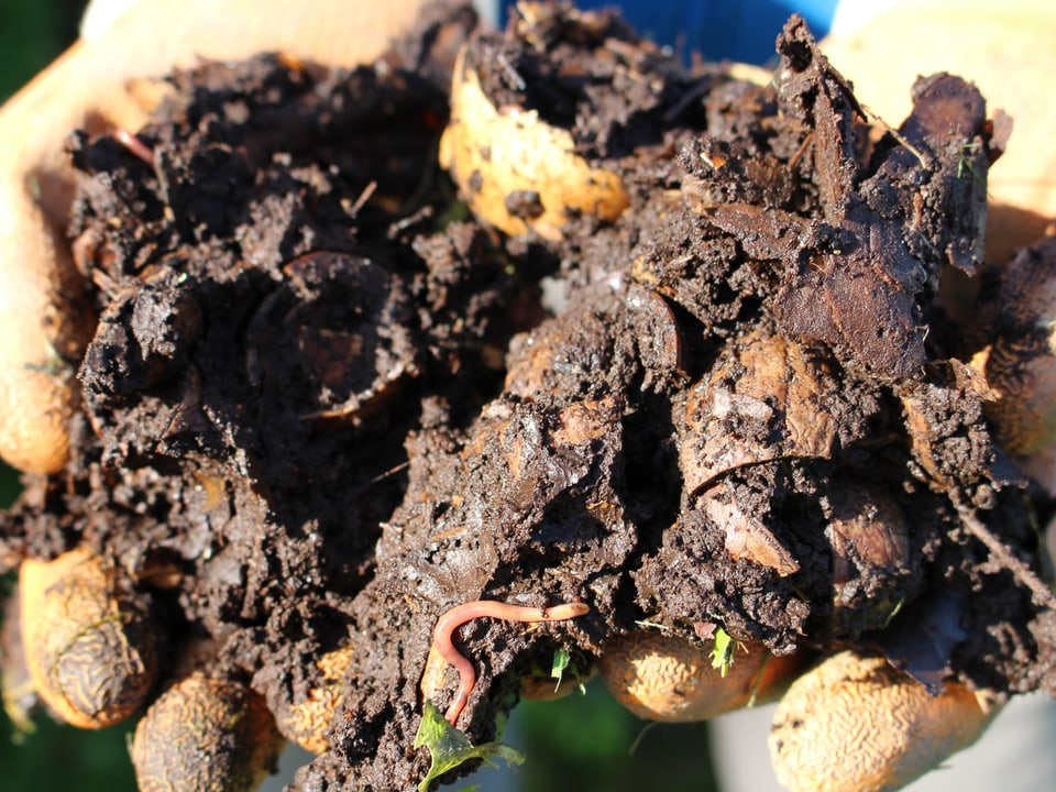 2 Zu feuchtes Material wird mit Häckselgut  gemischt oder mit Steinmehl überstäubt