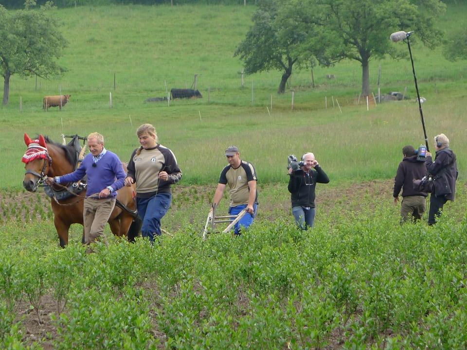 Kurt Aeschbacher führt das Pferd mit Pferdehacke auf dem Feld, unterstützt durch Katharina Schelbert und Andreas Reichenbach. Die Fernsehequipe folgt dem Tross.