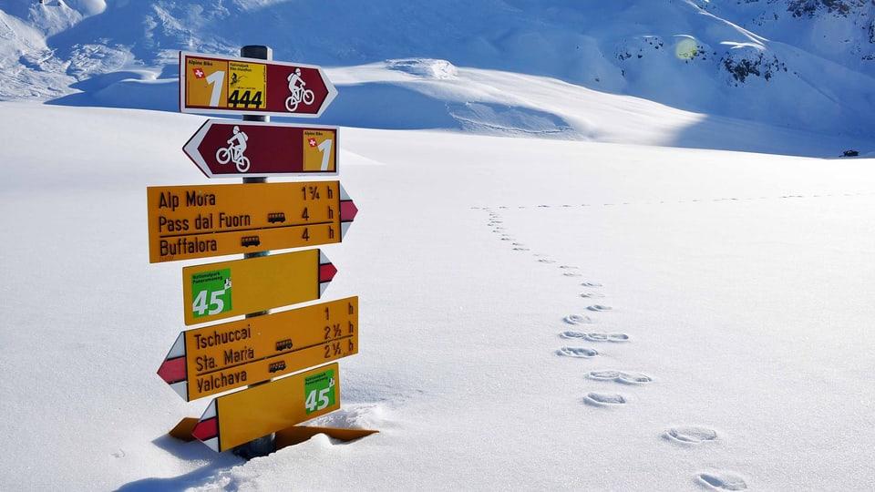 Keine Spur von Menschen: Das Seitental Val Mora gilt als wichtiges Refugium der Wildtiere im Winter und soll seine natürliche Ruhe bewahren (eingeschneite Wegweiser in einer Winterlandschaft).