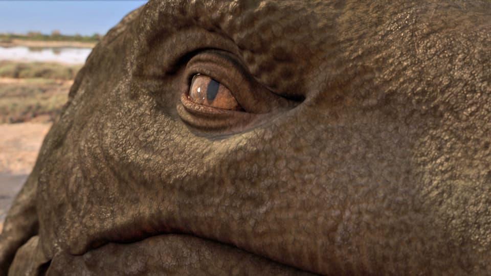 Dino Auge schaut in Kamera