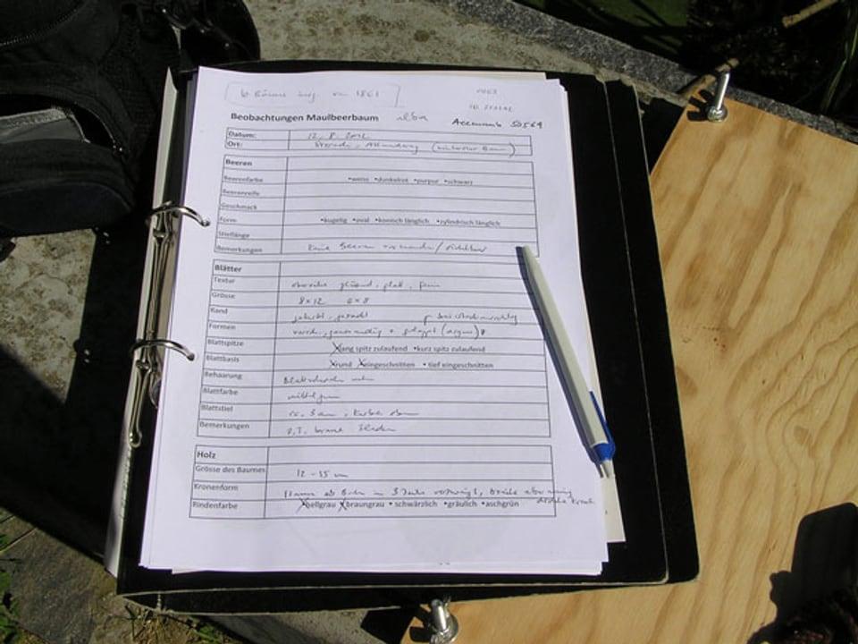 Deskriptorenblatt mit Tabelle und Zahlen.
