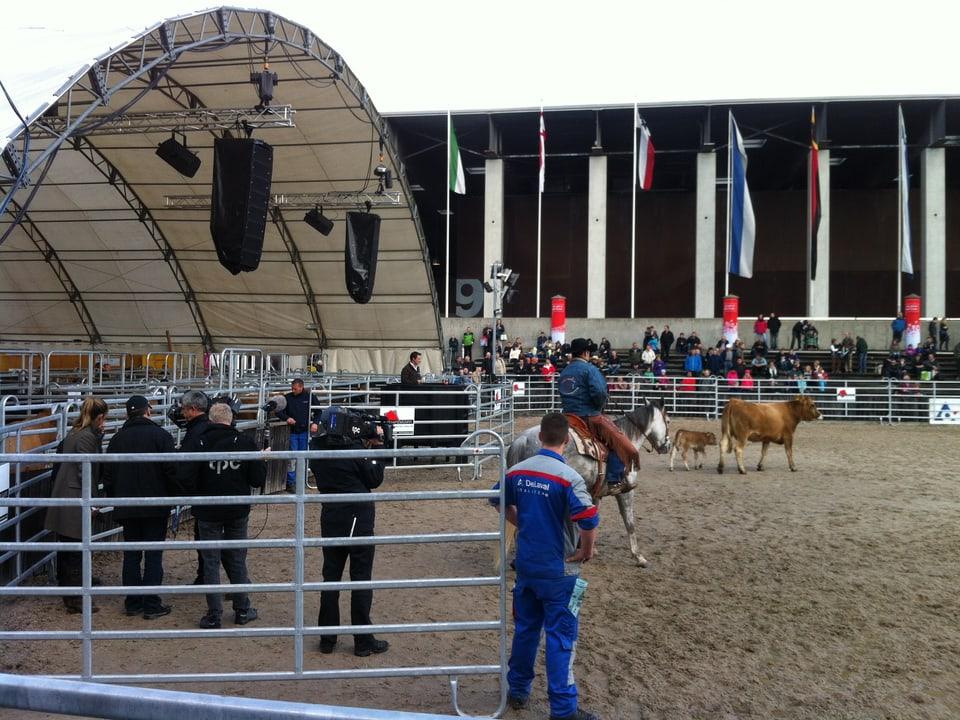 Moderatorin Corinna Waldmeyer vor einer Kuhfamilie und Cowboy hoch zu Ross.