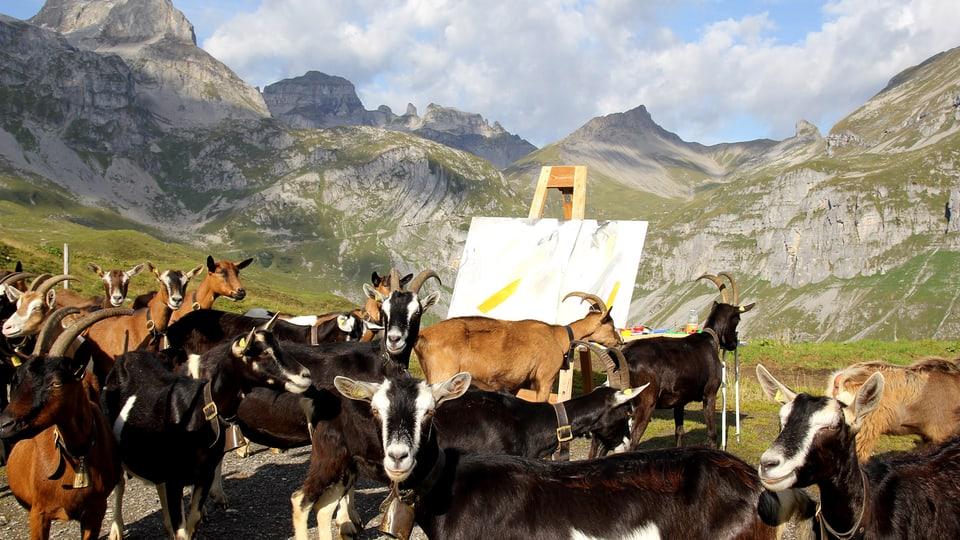 3fabcc28da32fb Zentralschweiz - «Solche Bilder könnte ich im Atelier nicht malen» - News -  SRF