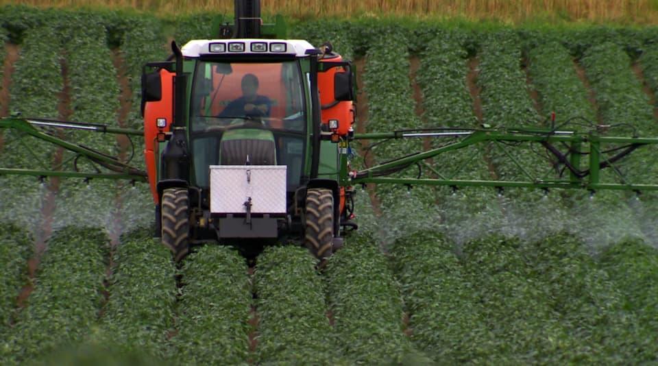 Bis zum Letzten: Konventionelle Spritzmittel werden wegen Resistenzen in den Kulturen immer unwirksamer. Neue Pestizide sind giftiger und bergen unbekannte Auswirkungen. (Traktor spritzt Pestizide auf Kartoffelfeld)