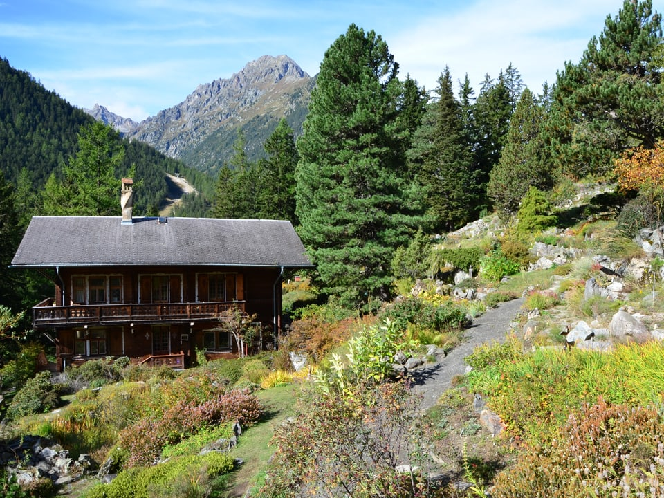 Flore-Alpe Champex (VS).