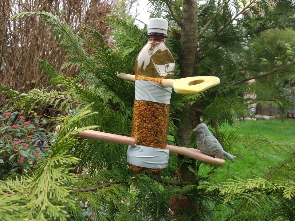 Petflasche mit Vogelfutter gefühlt