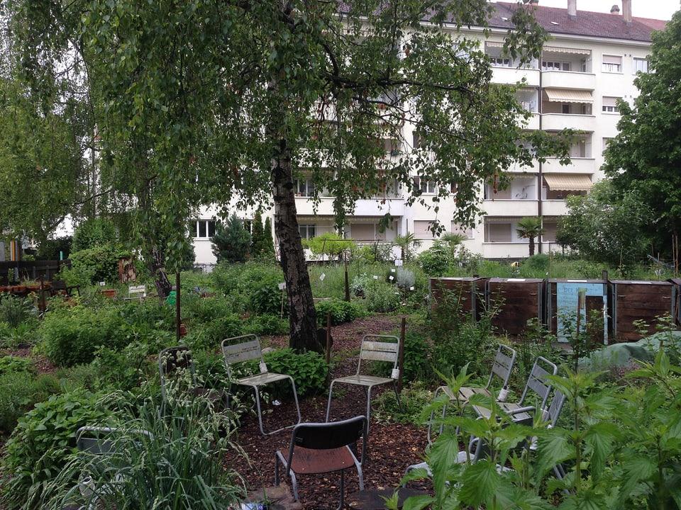 Gemeinschaftsgarten vor Blockwohnungen.