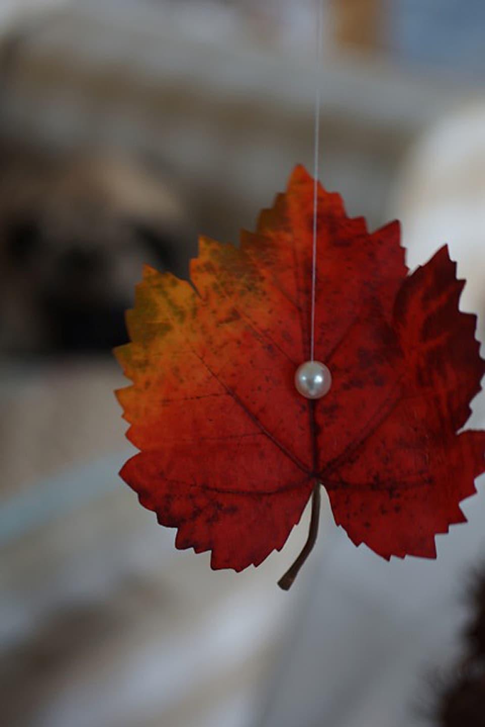 Rotes Baumblatt mit Perle an einem Nylonfaden aufgehängt.