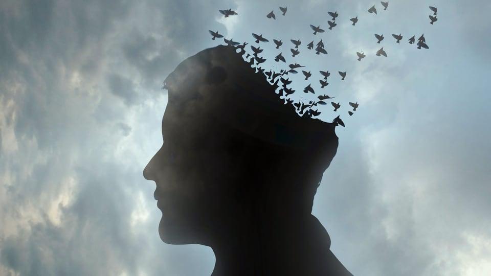«Alzheimer beginnt lange, bevor die Patienten etwas merken» (Artikel enthält Audio)
