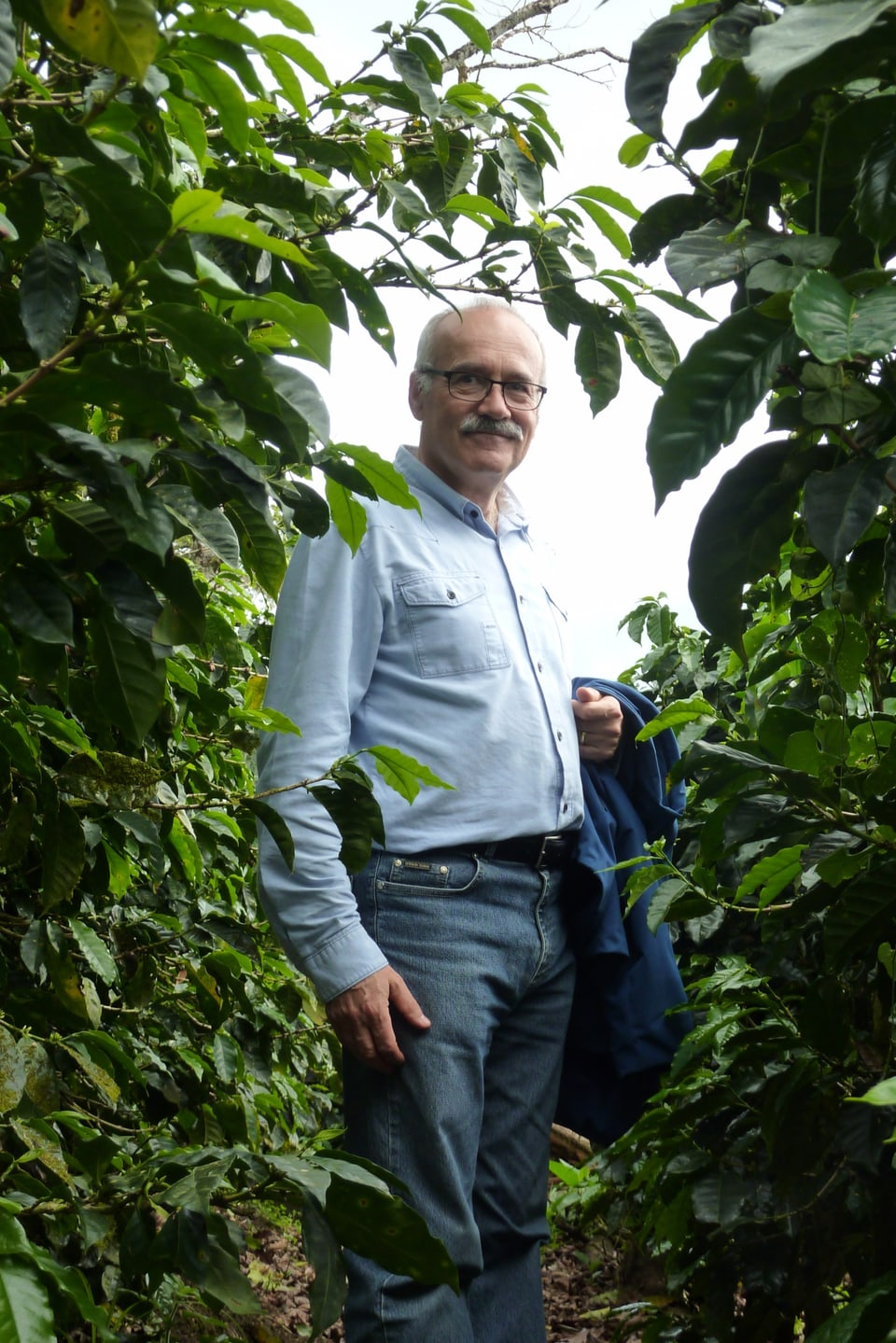 Daniel Badilatti en il Nicaragua tranter plantas da café