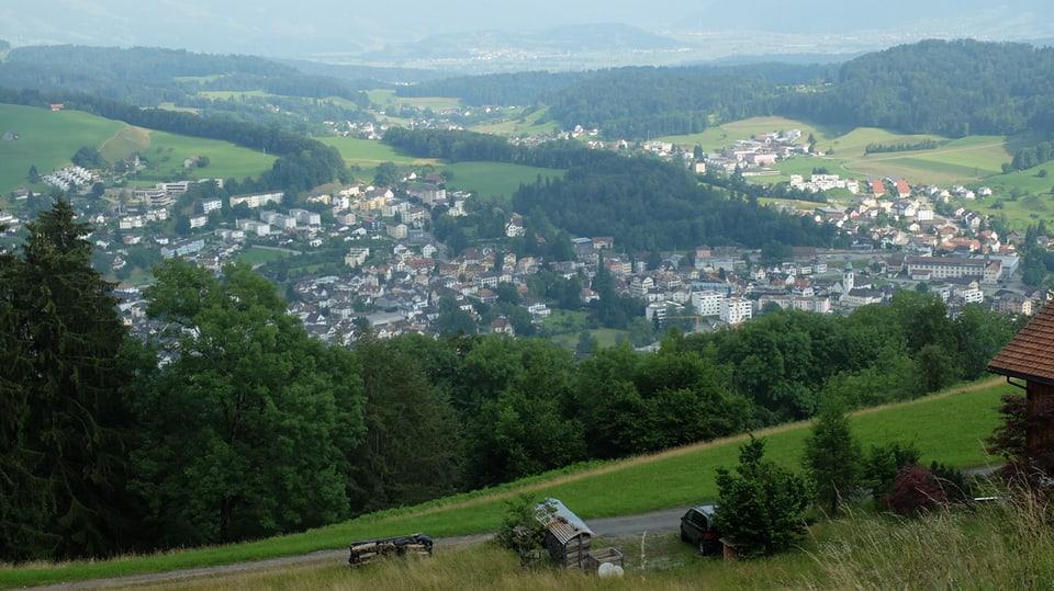 Das Ziel im Blick: Wald im Zürcher Oberland