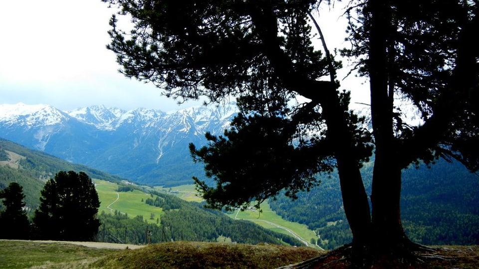 Tal der Pioniere: Die Bevölkerung im Val Müstair macht vor wie Harmonie zwischen Mensch und Natur möglich wäre (Ausblick auf das Münstertal).