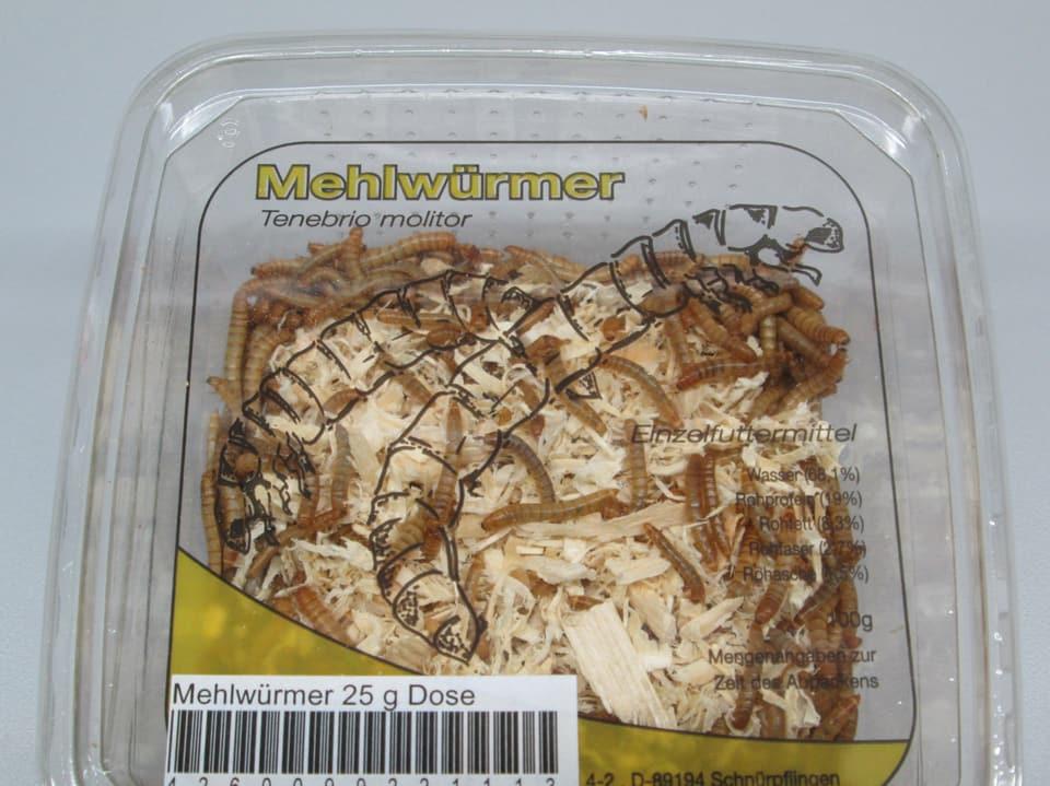 Mehlwürmer.