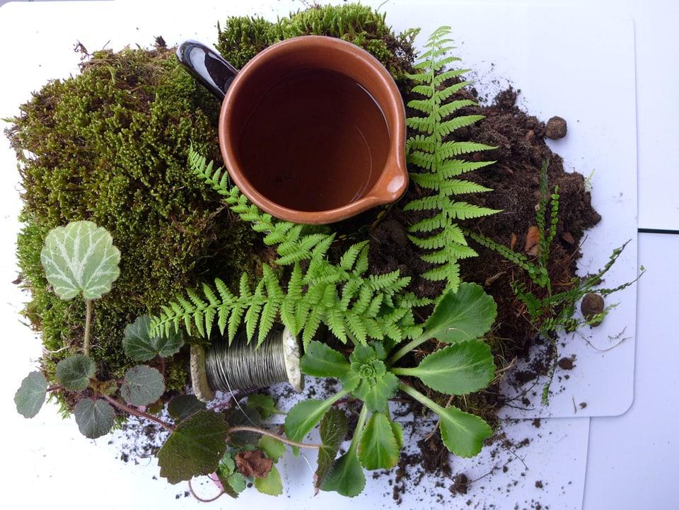 Wasserkrug, Moosplatten, Jungpflanzen, Erde, feiner Draht, Wasser liegen auf einer weissen Oberfläche.