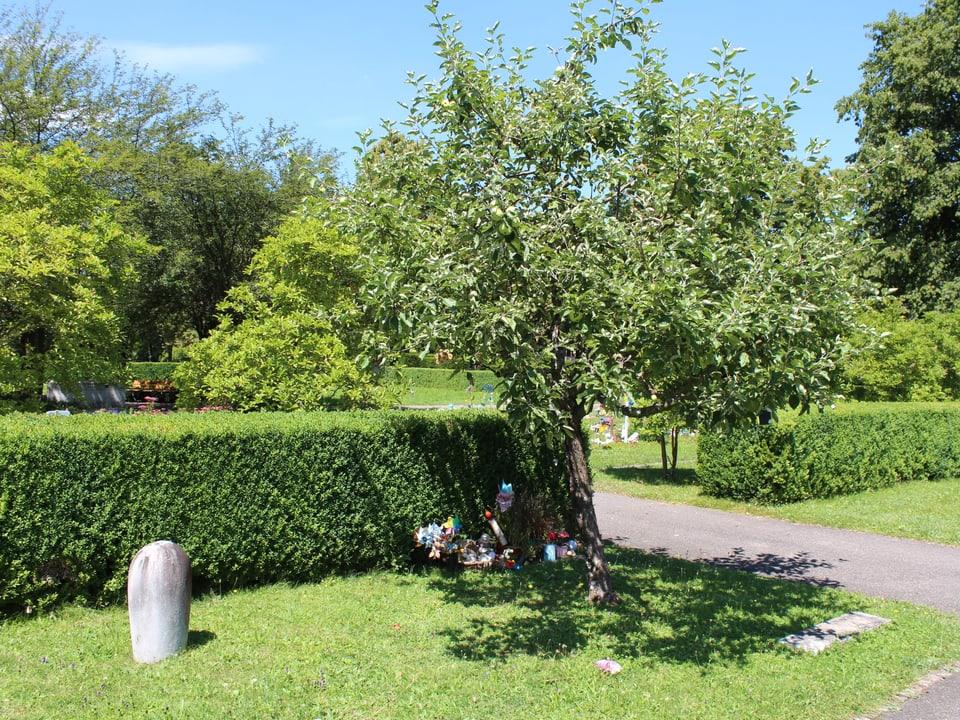 Apfelbaum mit Gräbern.