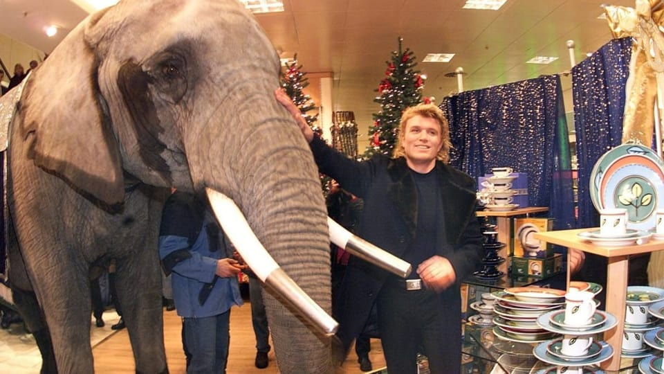 «Elefant im Porzellanladen»