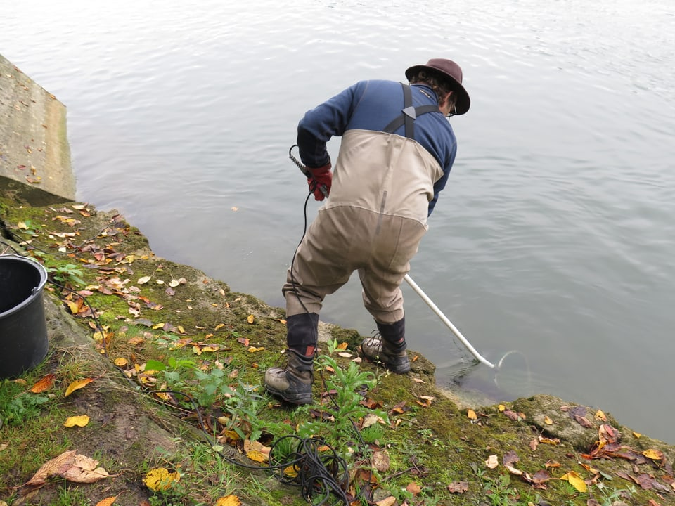 Ein Mann fischt im Wasser.