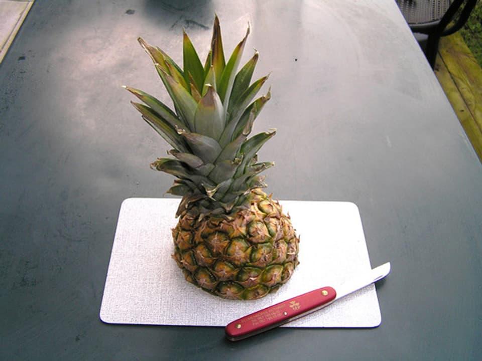Oberstes Viertel einer Ananas mit Blätterwerk liegt neben Messer auf Schneidebrett auf Küchentisch.