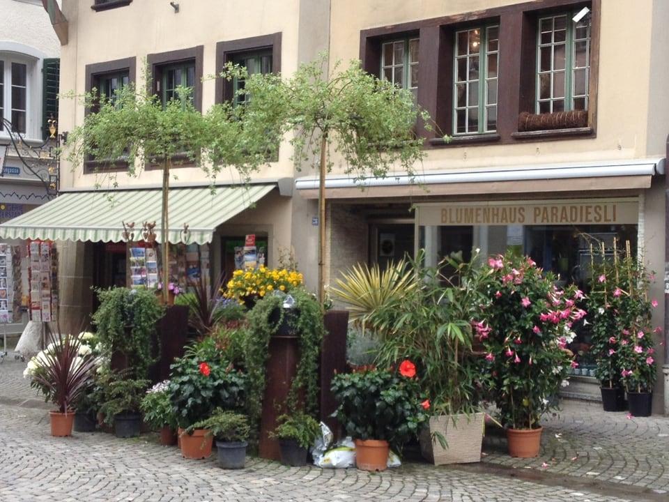 Fachgeschäfte prägen das Bild in der Zofinger Altstadt, aber auch leere Schaufenster trifft man an.