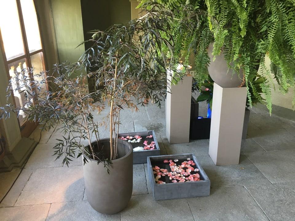 Blick in die Eingangshalle mit Farn, Wasserbecken mit Rosenblätter und einem kleinen Olivenbaum.