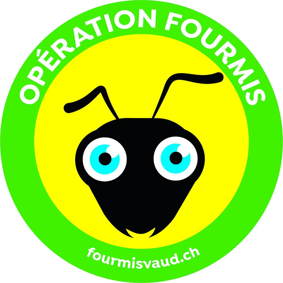 Il logo da «Opération Fourmis».