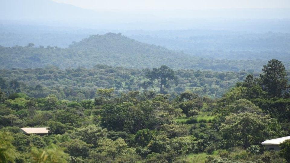 Ausblick vom Haus der Paholos – Katharina liebte Afrika