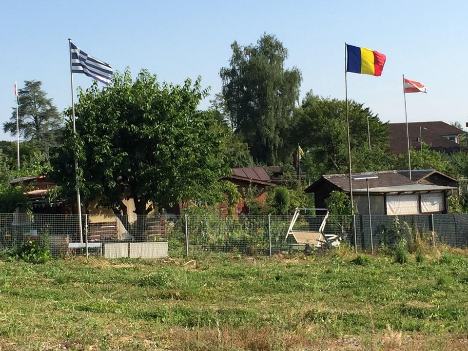 Flaggen im Schrebergarten.