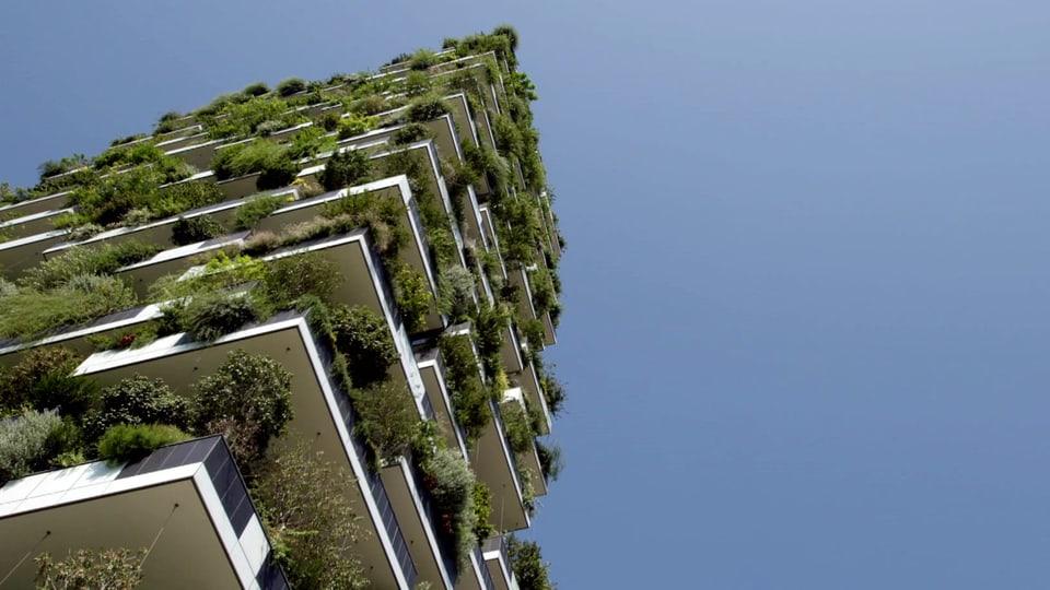 900 Bäume, 5000 Büsche und 11000 Pflanzen: