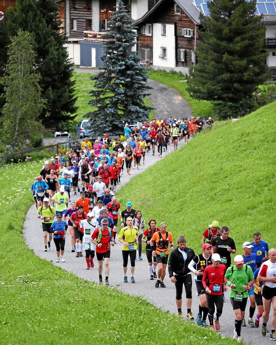 Participants curran da via si.