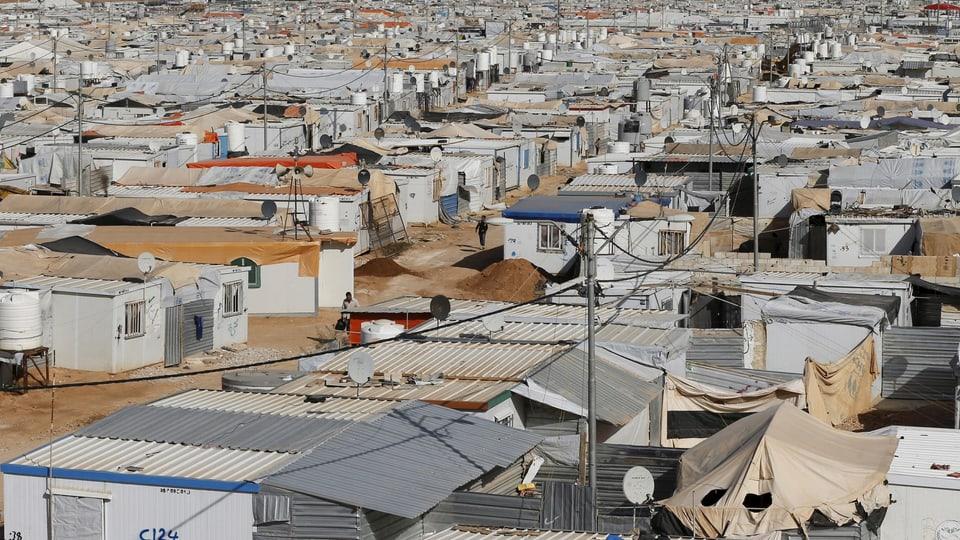 Syrische Flüchtlinge trauen dem Frieden nicht