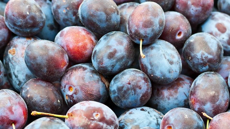 Vitamine von Früchten in den Winter retten