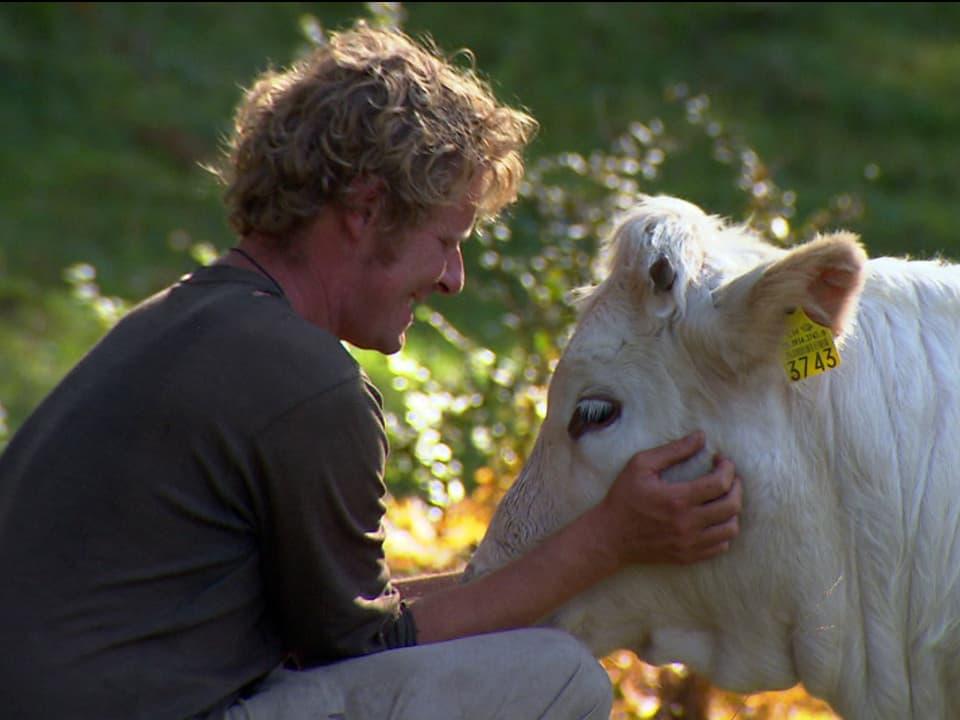 Enge Beziehung: Die Vertrautheit mit Menschen ist Voraussetzung für eine gute Mutterkuhhaltung (Mann krault Kopf von Rind).