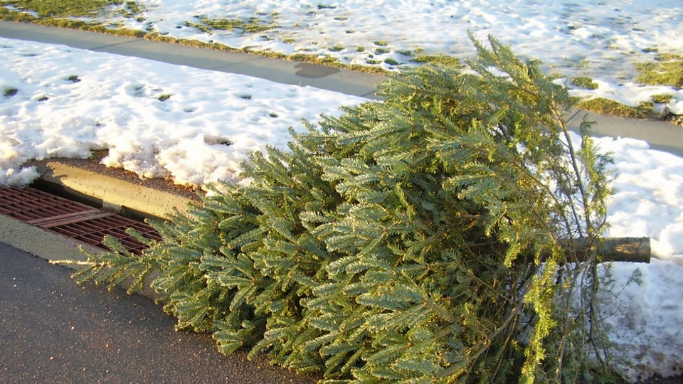 Per dismetter il pignol da Nadal dat igl differentas pussaivladads, bunas e schlettas.